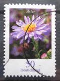 Poštovní známka Německo 2005 Astřička novoanglická Mi# 2463