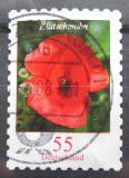 Poštovní známka Německo 2005 Mák vlčí Mi# 2477