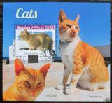 Poštovní známka Maledivy 2019 Kočky Mi# N/N