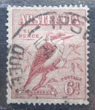 Poštovní známka Austrálie 1932 Ledňák obrovský Mi# 119