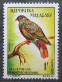 Poštovní známka Madagaskar 1963 Holub červenoocasý Mi# 495
