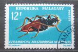 Poštovní známka Madagaskar 1966 Mastododera nodicollis Mi# 548