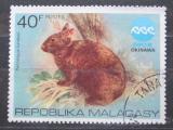 Poštovní známka Madagaskar 1975 Králík japonský Mi# 758