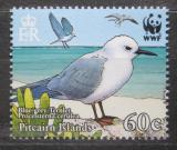 Poštovní známka Pitcairnovy ostrovy 2007 Nody šedý, WWF Mi# 718