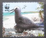 Poštovní známka Pitcairnovy ostrovy 2007 Nody bělotemenný, WWF Mi# 720