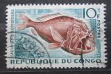 Poštovní známka Kongo 1961 Caulolepis longidens Mi# 18