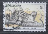 Poštovní známka Botswana 1987 Ženetka skvrnitá Mi# 408