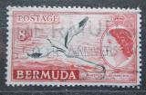 Poštovní známka Bermudy 1955 Faeton žlutozobý Mi# 139