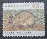 Poštovní známka Austrálie 1992 Klokan parma Mi# 1279