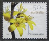 Poštovní známka Austrálie 2007 Phebalium whitei Mii# 2776