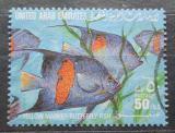 Poštovní známka S.A.E. 1991 Ryby Mi# 337