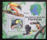 Poštovní známka Mosambik 2011 Tukani Mi# Block 417 Kat 10€