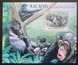 Poštovní známka Mosambik 2012 Hominidé Mi# Block 639 Kat 10€