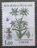 Poštovní známka Francie 1983 Carlina flore rubente Mi# 2392