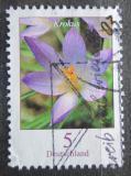 Poštovní známka Německo 2005 Šafrán Tommasiniho Mi# 2480 A