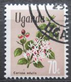 Poštovní známka Uganda 1969 Carissa edulis Mi# 113