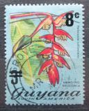 Poštovní známka Guyana 1975 Heliconia collinsiana přetisk Mi# 472