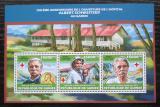 Poštovní známky Guinea 2013 Albert Schweitzer Mi# 10149-51 Kat 18€