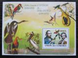 Poštovní známka Komory 2009 Ptáci, Audubon a Gould Mi# Block 457 Kat 15€