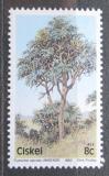 Poštovní známka Ciskei, JAR 1983 Cussonia spicata Mi# 34