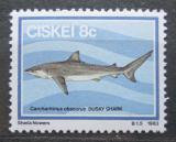 Poštovní známka Ciskei, JAR 1983 Žralok velrybář Mi# 38