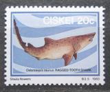 Poštovní známka Ciskei, JAR 1983 Žralok písečný Mi# 39