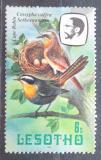 Poštovní známka Lesotho 1982 Drozdík kapský Mi# 334 II X