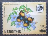 Poštovní známka Lesotho 1987 Junonia hierta cebrene přetisk Mi# 645
