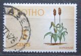 Poštovní známka Lesotho 1971 Čirok dvoubarevný Mi# 95 Y