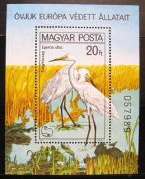 Poštovní známka Maïarsko 1980 Volavka Mi# Block 146