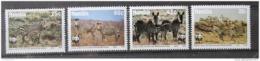 Poštovní známky Namíbie 1991 Horská zebra, WWF Mi# 702-05