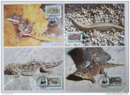 Maxikarty Kapverdy 1986 Ještìrky, WWF 038 Mi# 500-03