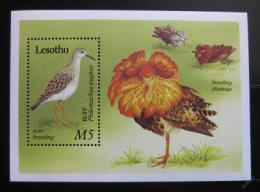 Poštovní známka Lesotho 1989 Ptáci Mi# Block 66