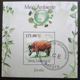 Poštovní známka Mosambik 2010 Štìtkoun Mi# Block 299