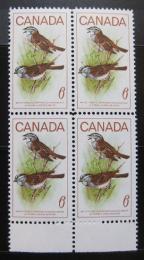 Poštovní známky Kanada 1969 Strnadec bìlohrdý, ètyøblok Mi# 438