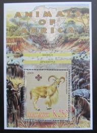 Poštovní známka Malawi 2005 Paovce høivnatá, skauting