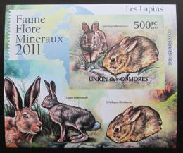 Poštovní známka Komory 2011 Králíci, neperf Deluxe Mi# 3052 B
