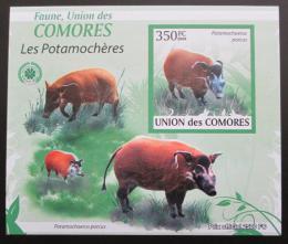 Poštovní známka Komory 2009 Štìtkoun africký neperf. Mi# 2430 B