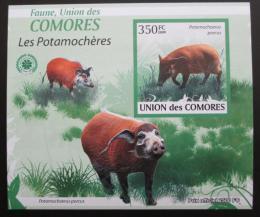 Poštovní známka Komory 2009 Štìtkoun africký neperf. Mi# 2431 B