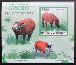 Poštovní známka Komory 2009 Štìtkoun africký neperf. Mi# 2432 B