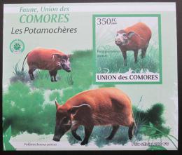 Poštovní známka Komory 2009 Štìtkoun africký neperf. Mi# 2433 B