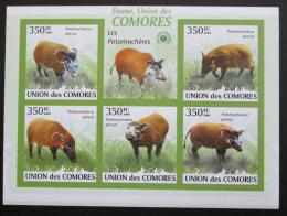 Poštovní známky Komory 2009 Štìtkoun africký neperf. Mi# 2430-34 B - zvìtšit obrázek