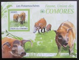 Poštovní známka Komory 2009 Štìtkoun africký neperf. Mi# Block 527 B