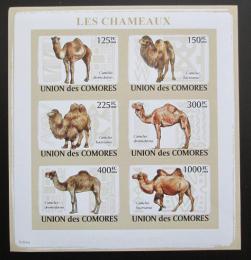 Poštovní známky Komory 2009 Velbloudi neperf. Mi# 2128-34 B