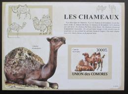 Poštovní známka Komory 2009 Velbloudi neperf Mi# Block 476 B