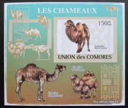 Poštovní známka Komory 2009 Velbloud neperf Deluxe Mi# 2129 B