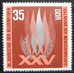 Poštovní známka DDR 1973 Lidská práva Mi# 1898