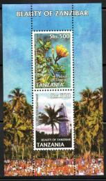 Poštovní známky Tanzánie 2006 Krásy Zanzibaru Mi# Block 594