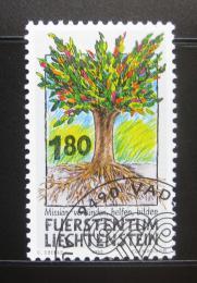 Poštovní známka Lichtenštejnsko 1993 Misionáøská práce Mi# 1064
