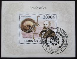 Poštovní známka Komory 2009 Fosílie Mi# Block 564 Kat 15€